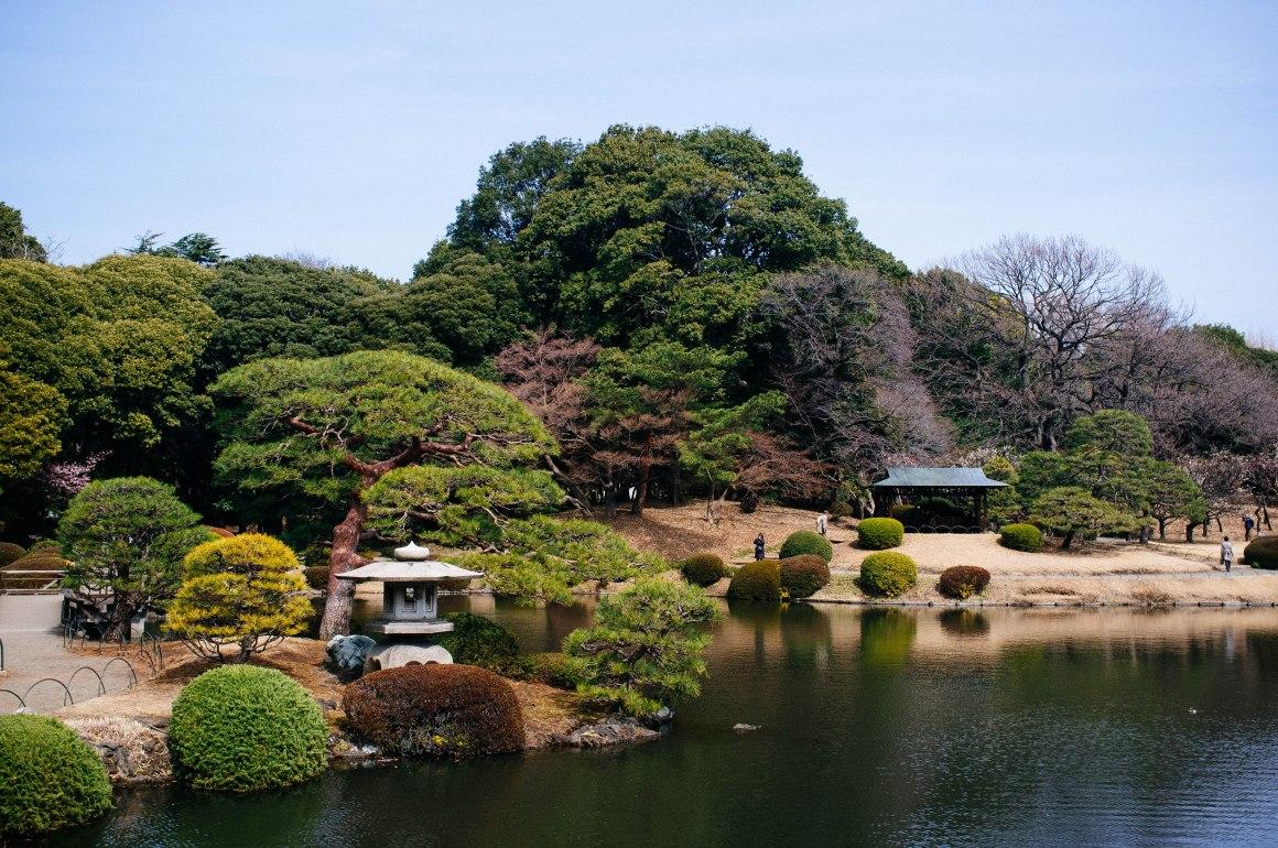 shinjuku_garden_004