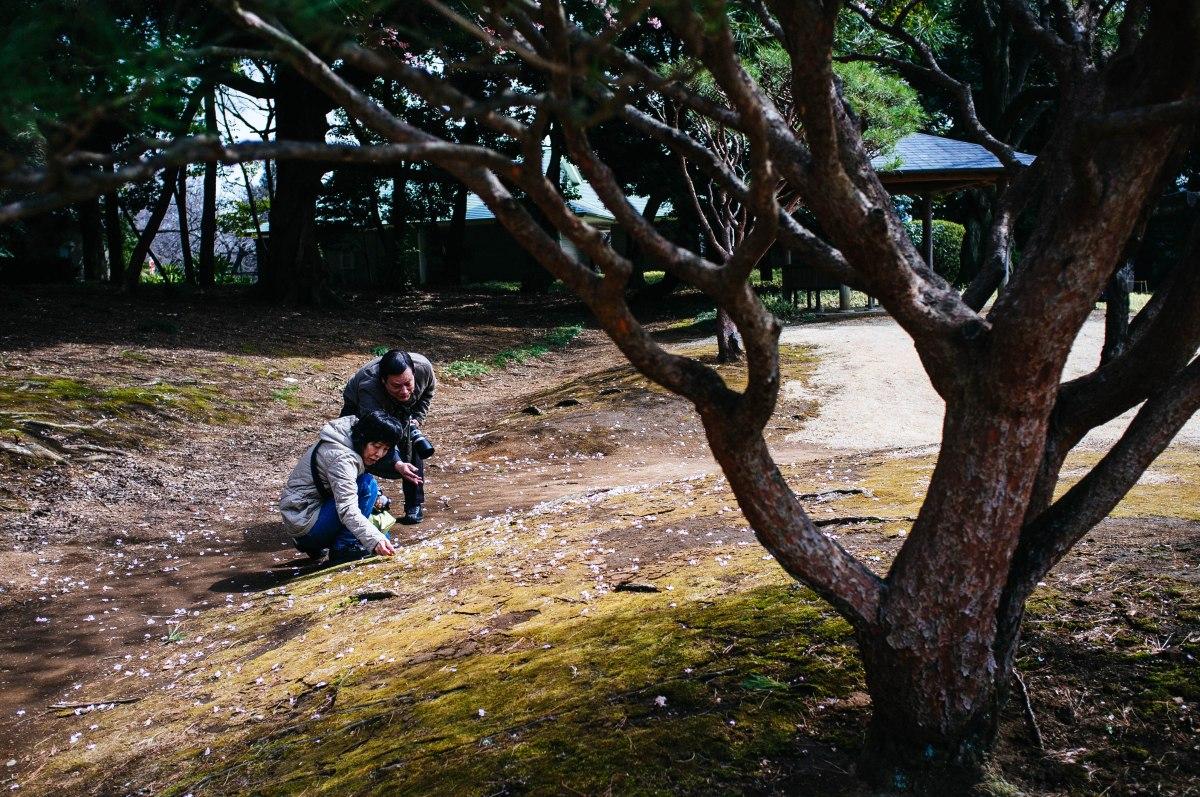 shinjuku_garden_015