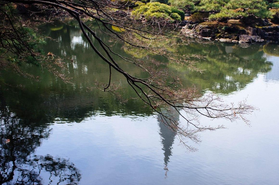 shinjuku_garden_019