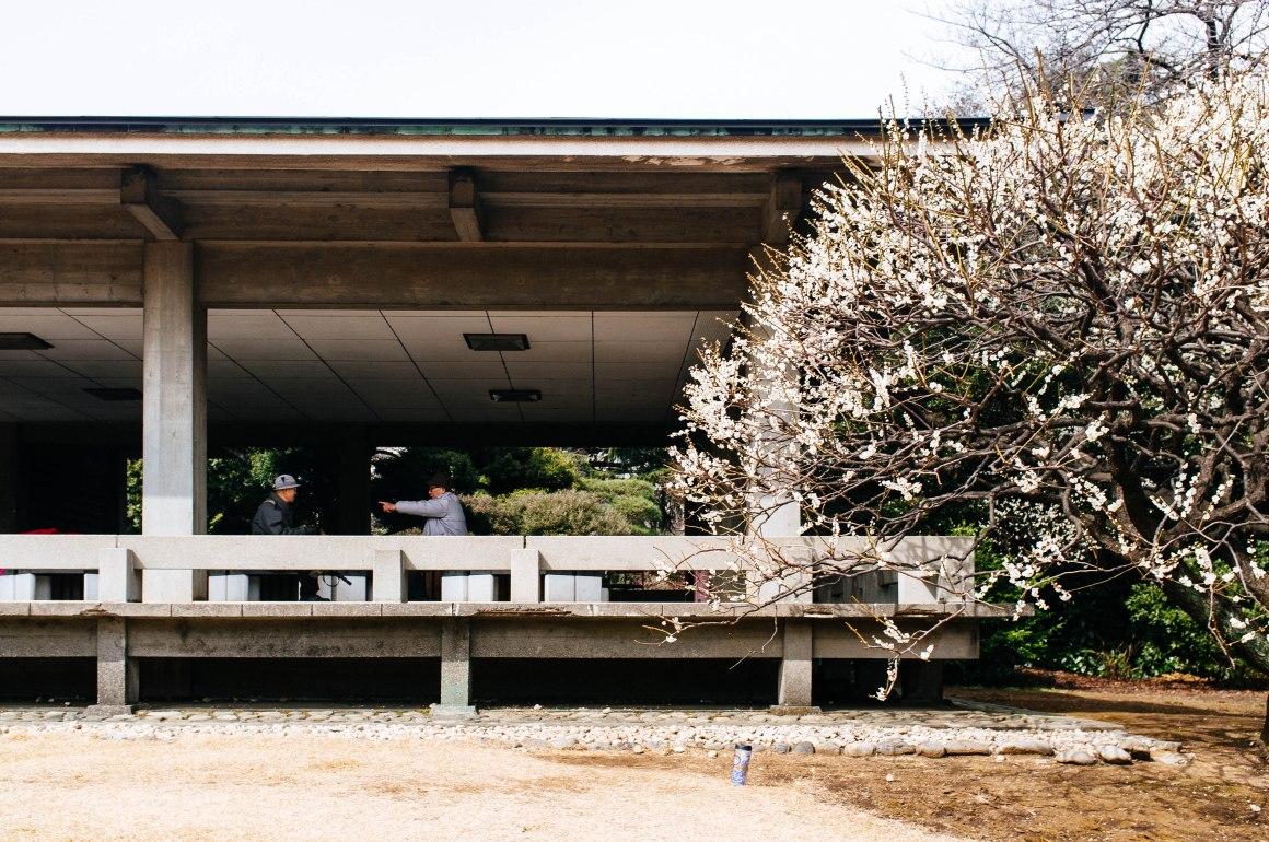 shinjuku_garden_031