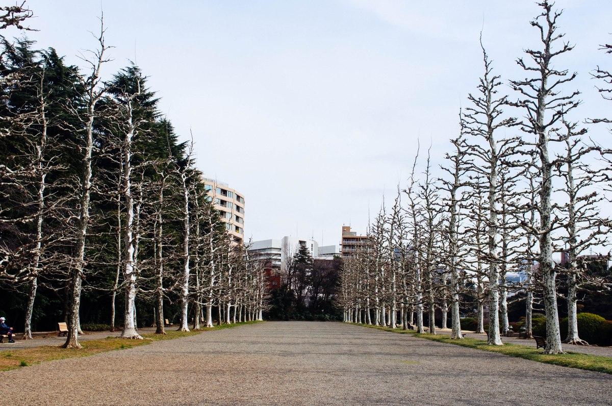 shinjuku_garden_033