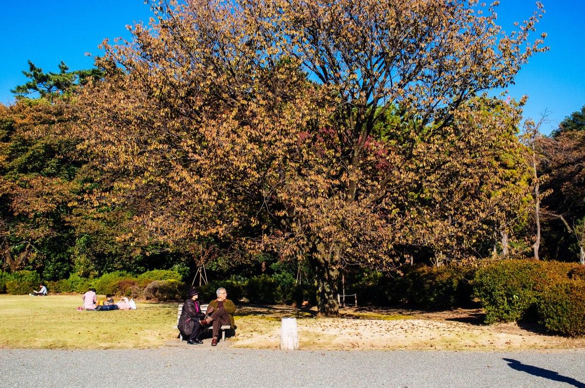 shinjuku_garden_044