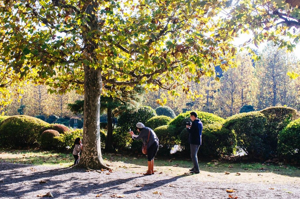 shinjuku_garden_046