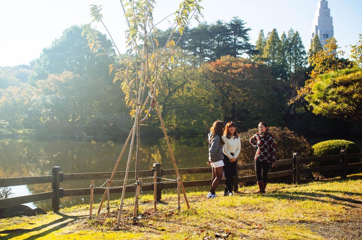 shinjuku_garden_052