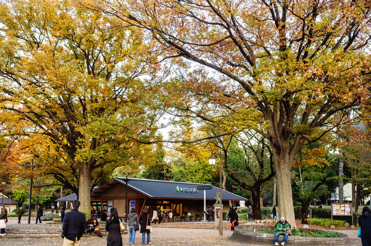 Ueno Park, Tokyo, Japan