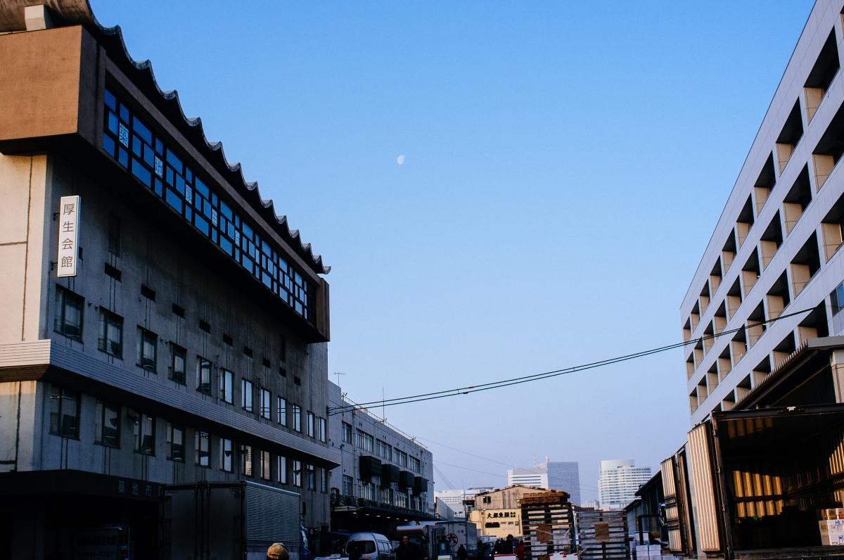 Tsukiji Fish Market 032