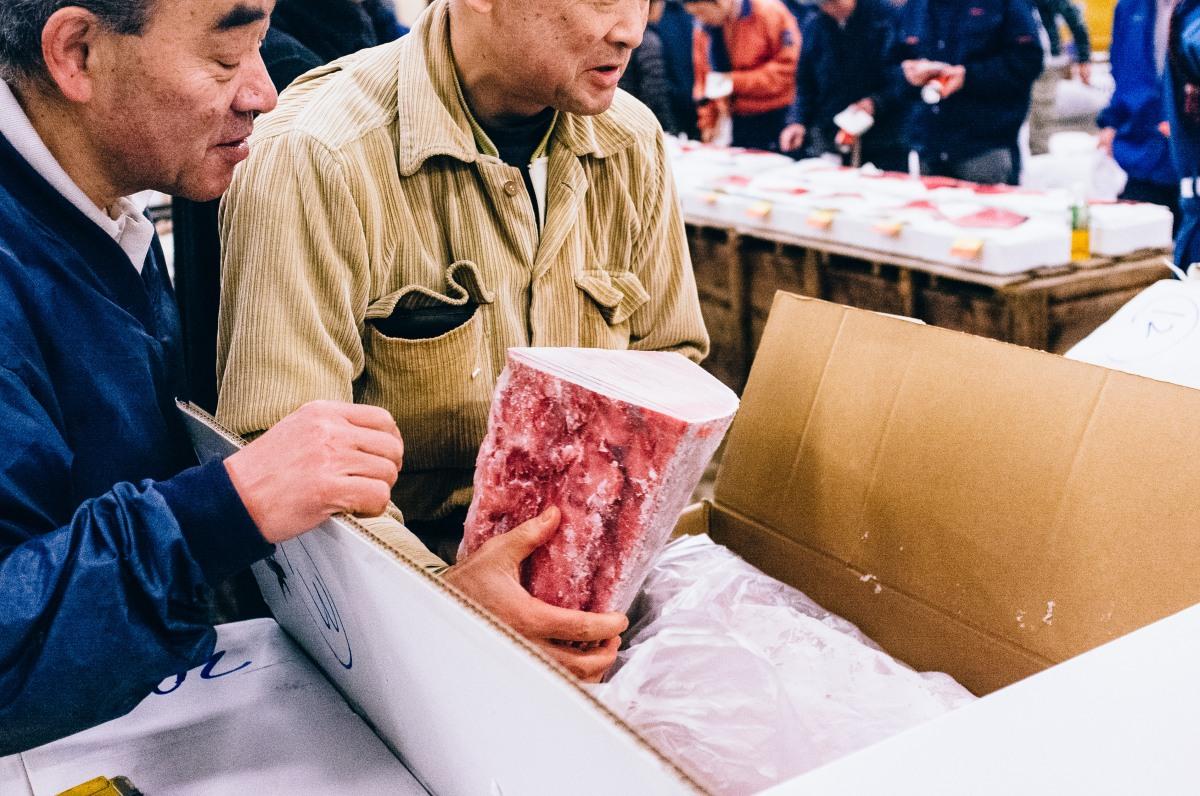 Tsukiji Fish Market 035