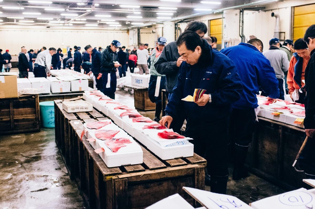Tsukiji Fish Market 036