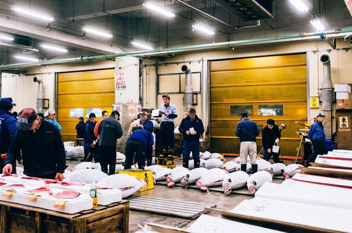 Tsukiji Fish Market 037
